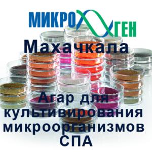 Агар для культивирования микроорганизмов СПА